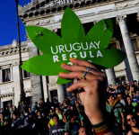 Demonstration for the legalization of marijuana Dec .10, 2013 (PABLO PORCIUNCULA/AFP/Getty Images)